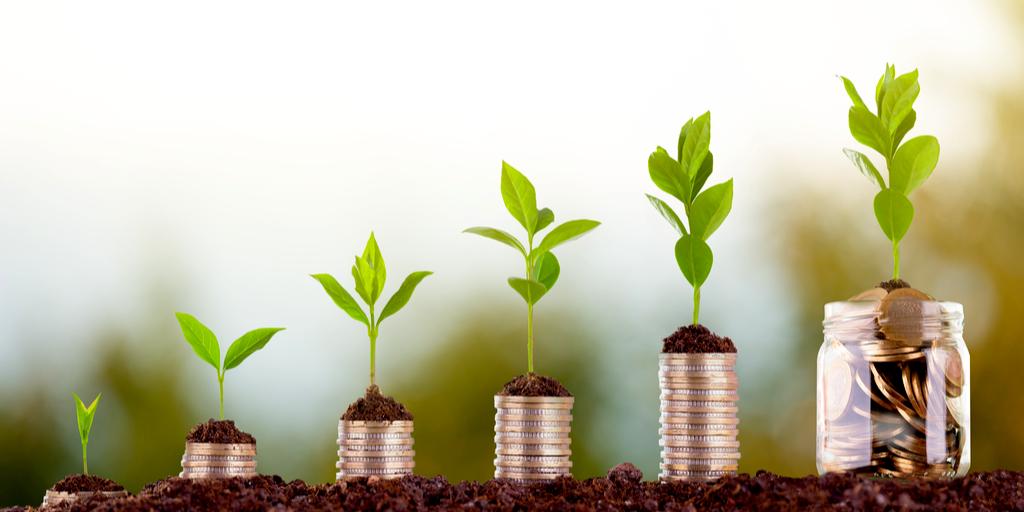 penger som øker med planter på